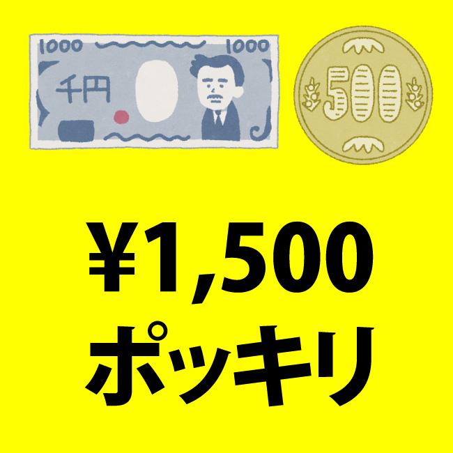 1500円ポッキリセール