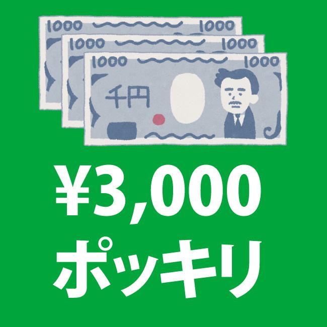 3000円ポッキリセール
