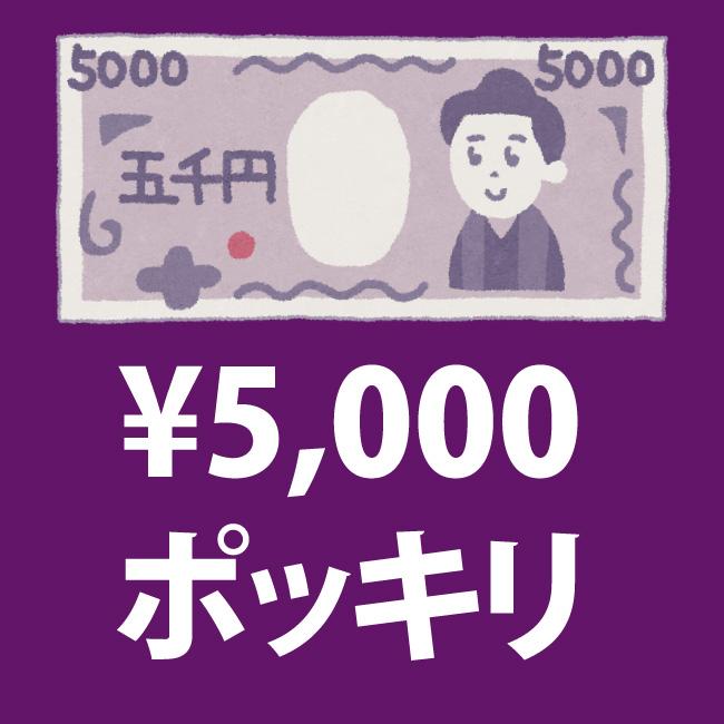 5000円ポッキリセール