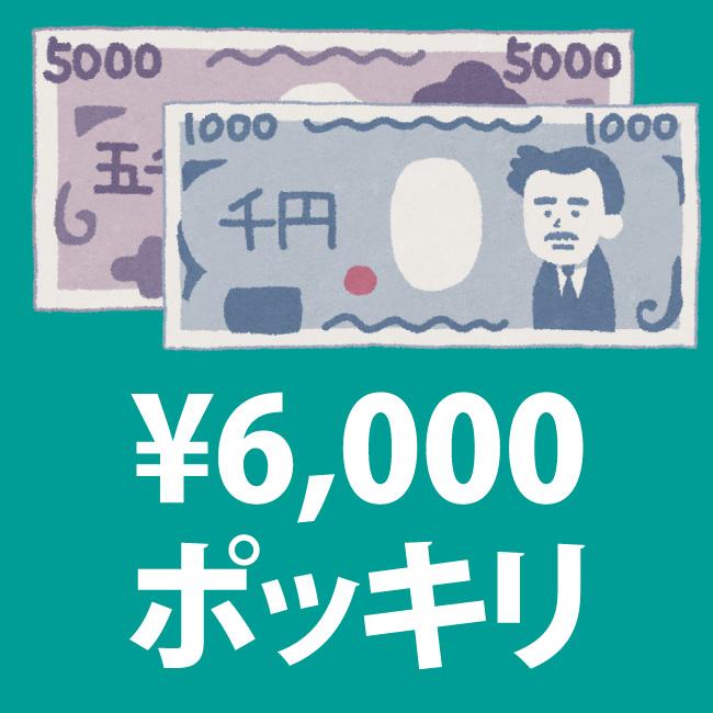 6000円ポッキリセール