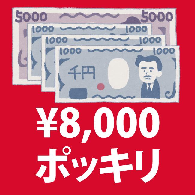 8000円ポッキリセール